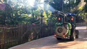 Familypark Neusiedlersee Eichenprozessionsspinner Bekämpfung