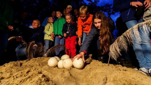 Allwetterzoo Münster Nachts im Zoo 2019