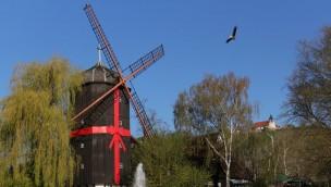 Erlebnispark Tripsdrill Altweibermühle Jubiläum