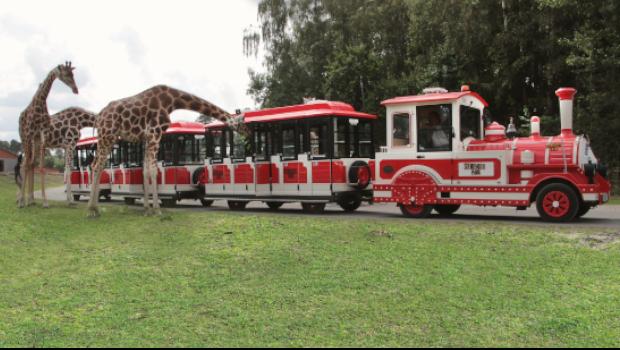 Serengeti-Park Big-Five-Express