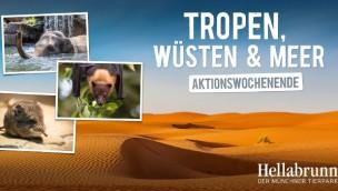 Tierpark Hellabrunn Aktionswochenende Tropen, Wüsten & Meer