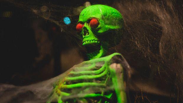 Kolmården Halloween