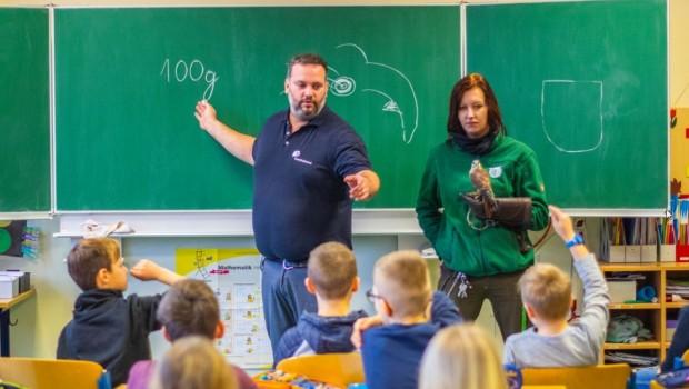 Wildpark Müden Tierischer Unterricht 2019