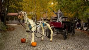 Freizeitpark Plohn Halloween Kutsche