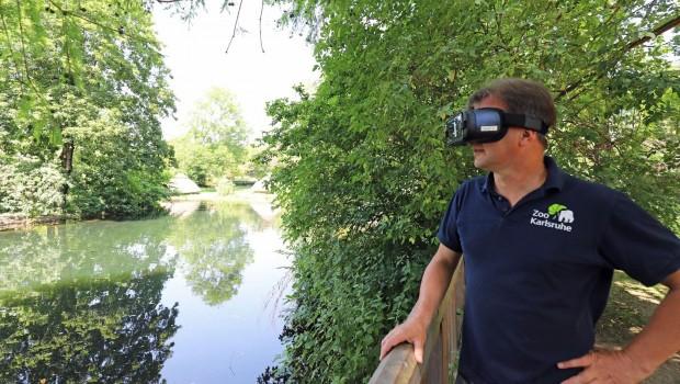 Zoo Karlsruhe Virtual Reality Katta Gehege