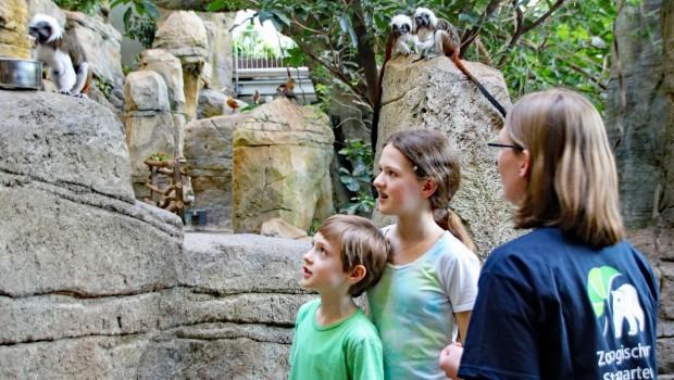 Zoo Karlsruhe Workshops