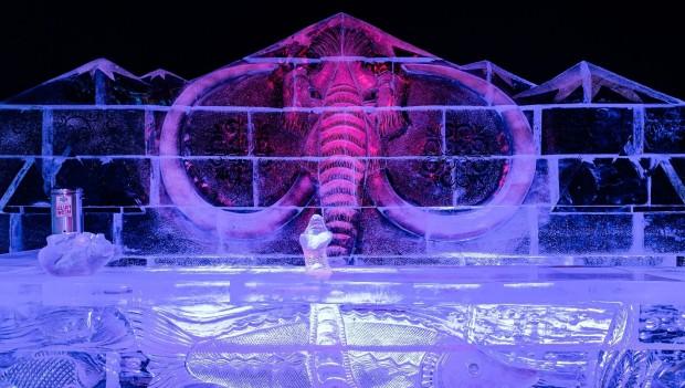 Eiswelt Elstal 2020 Mammut Eisbar