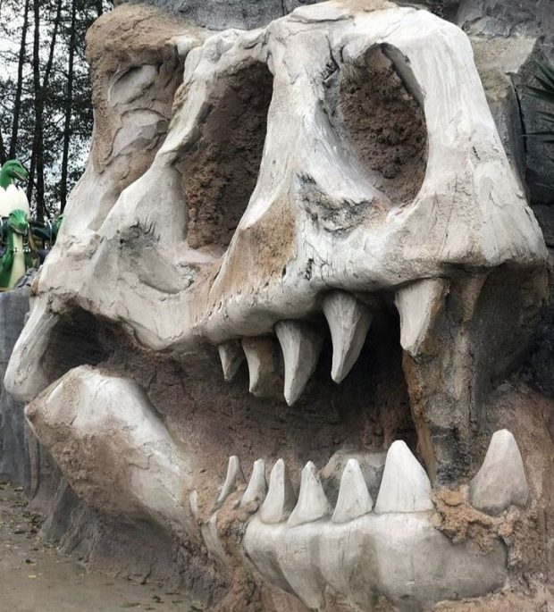 Parc Saint Paul Dino Disk'O Totenkopf