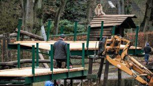 Tier- und Freizeitpark Thüle Berberaffen neues Gehege 2020