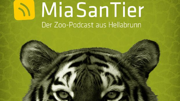 Tierpark Hellabrunn Podcast Mia san Tier