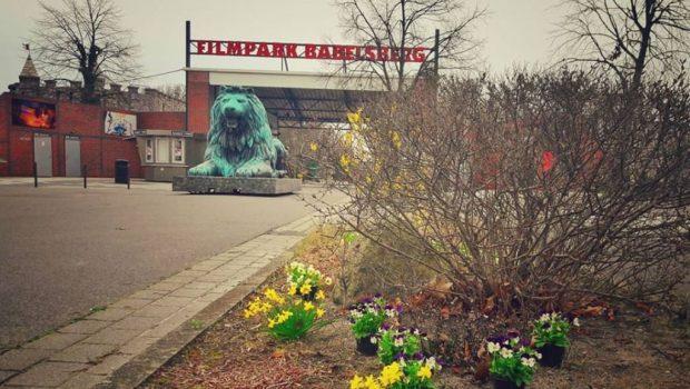 Filmpark Babelsberg Eingang