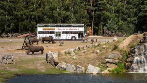 Serengeti-Park weitet Öffnung 2020 mit Neuheiten-Premiere aus